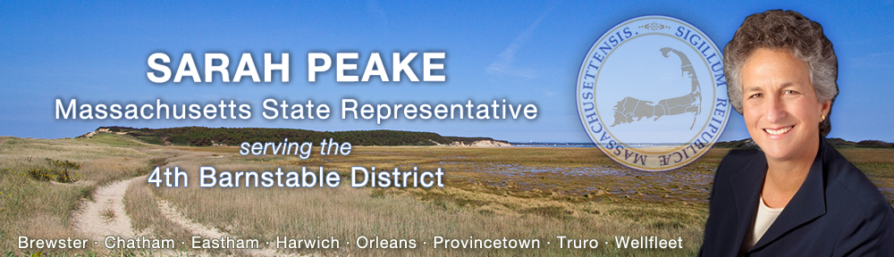 Sarah Peake for State Representative
